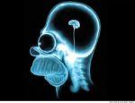brein-hoofdpijn.jpg