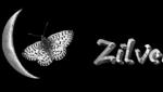 zilvermaan-forum-logo-rijdende-rechter.png
