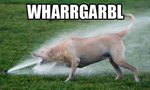 wharrgarbl.png