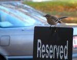 reserved-gereserveerd-claim